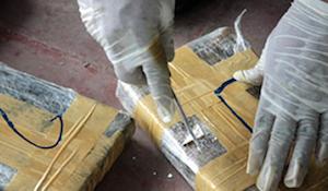 Aseguran más de 133 toneladas de droga en noviembre (22:13 h)