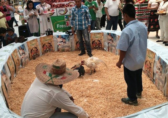 Walmart organiza peleas de gallos prohibidas, para vender un refresco (21:50 h)
