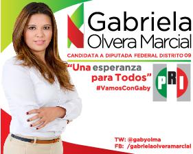Candidata a Diputada Federal Distrito 09