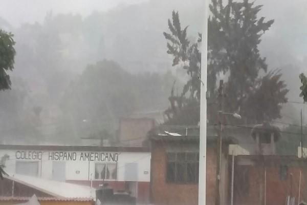 Tormenta ocasiona caída de árboles e inundaciones en Oaxaca (18:30 h)