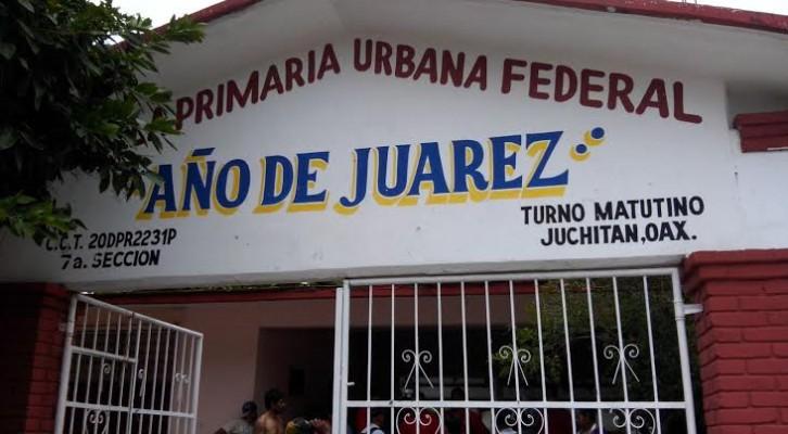 Abejas pican a niños de primaria en Juchitán (15:09 h)