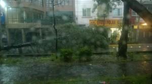 lluvia2sp2