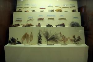 Museo Comunitario-Santa Ana del Valle (22)